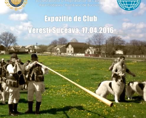 Expozitie de Club Veresti Suceava 17-04-2016