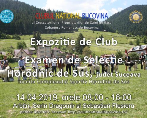 expozitie-2019-14-04-2019-examen-selectie-horodnic-de-sus-suceava