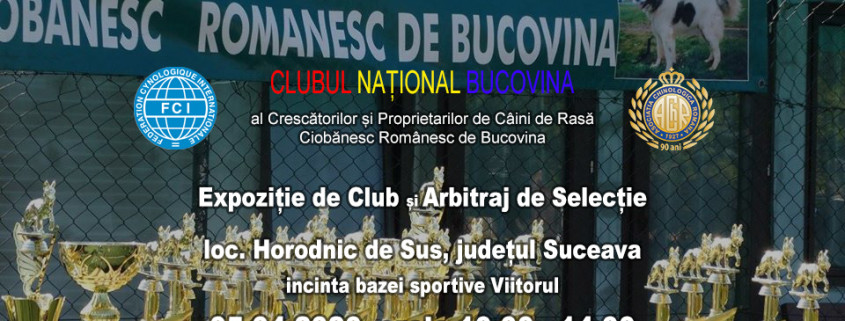 clubnationalbucovina-expozitie