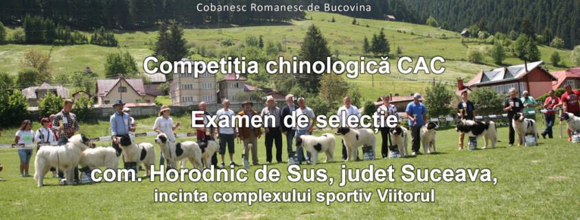 Competiția-chinologică-CAC-și-Examen-de-selecție,-Suceava,-06.06.2021